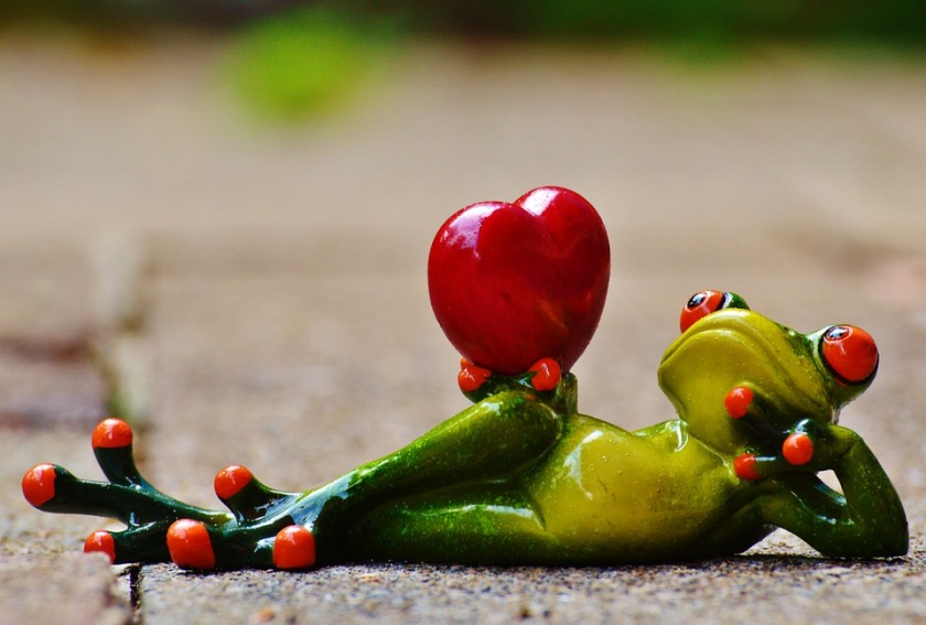 love-frog