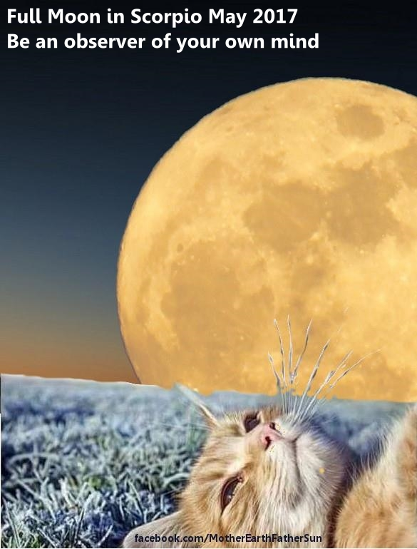 Full Moon in Scorpio May 2017